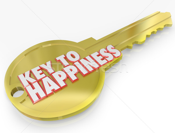Gold Key to Happiness Golden Secret of Success Stock photo © iqoncept