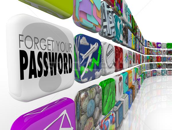 Wachtwoord software app rekening programma internet Stockfoto © iqoncept