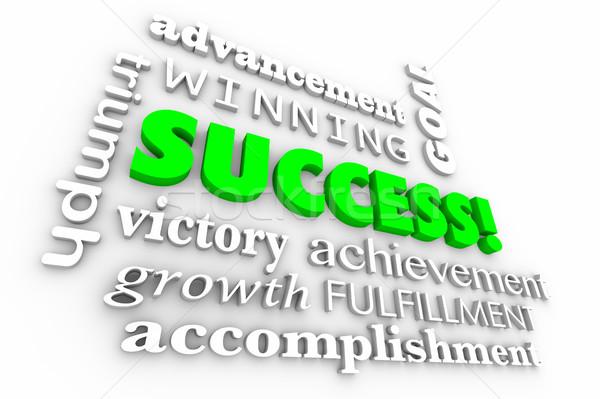 Successo obiettivo raggiunto vincitore parole collage Foto d'archivio © iqoncept