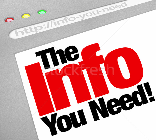 The Info You Need Website Screen Computer Internet Browser Stock photo © iqoncept