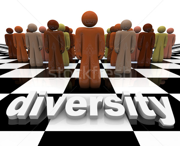 Diversity - Word and People on Chessboard Stock photo © iqoncept