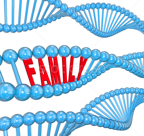 Family Word DNA Strand Biology Hereditary Traits Stock photo © iqoncept