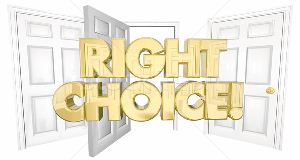 Right Choice Many Doors Choose Wisely Words 3d Illustration Stock photo © iqoncept