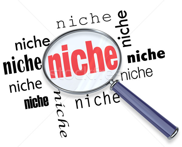 Finding a Targeted Niche - Magnifying Glass Stock photo © iqoncept