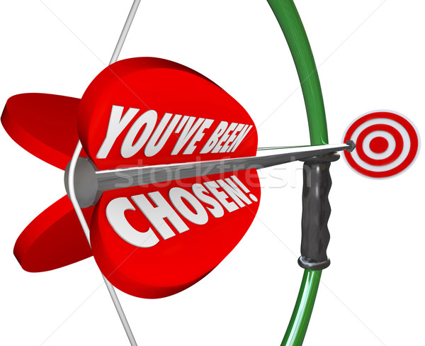 You've Been Chosen Bow Arrow Aiming at Selection Target Stock photo © iqoncept