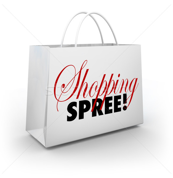 Shopping Spree Bag Marketplace Store Spending Money Stock photo © iqoncept