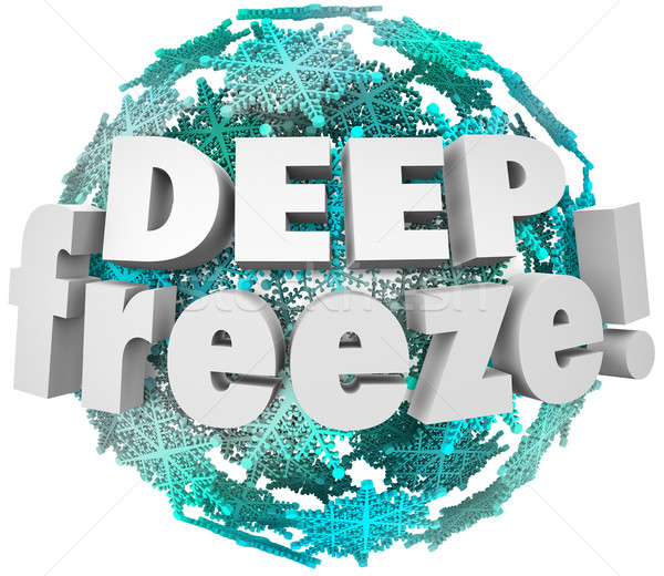 Deep Freeze Winter Weather Blizzard Storm Snowflake Sphere Stock photo © iqoncept
