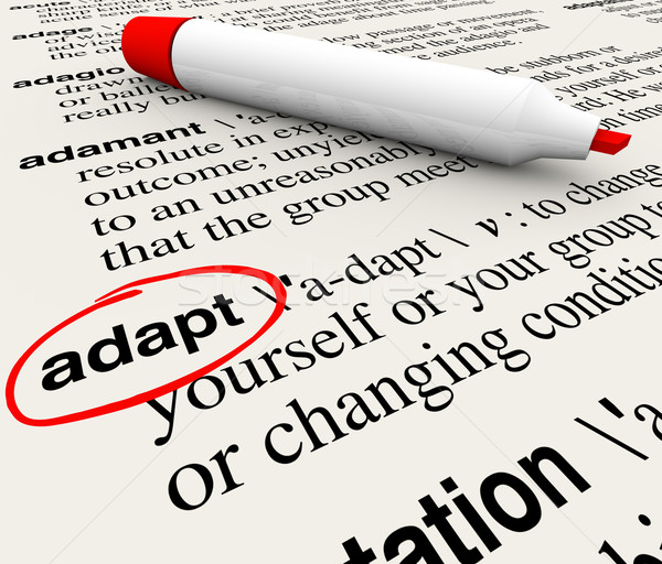 Adapt Dictionary Word Definition Change to Survive Stock photo © iqoncept