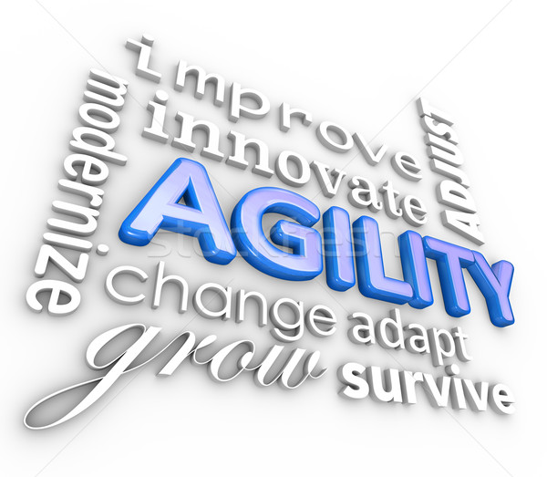 Agility Words 3d Collage Modernize Improve Innovate Change Stock photo © iqoncept