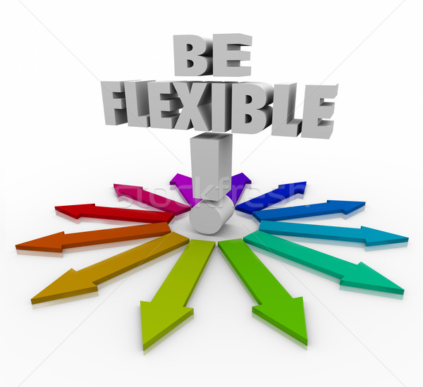 Stock photo: Be Flexible Adaptive Responsive Changing Direction Arrows