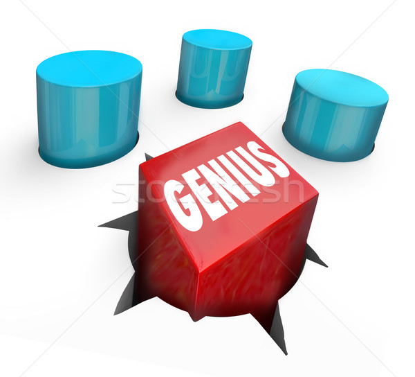 Genius Square Peg Round Hole Misfit Oddball Smart Individual Stock photo © iqoncept