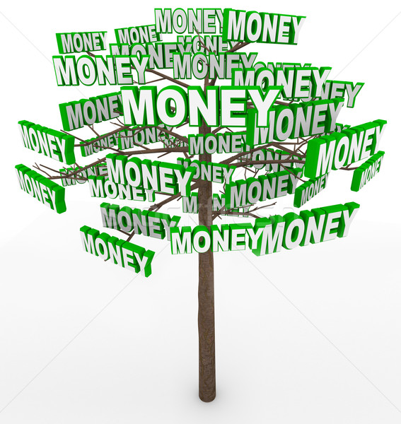 Money Growing on Trees Word on Tree Branches Stock photo © iqoncept