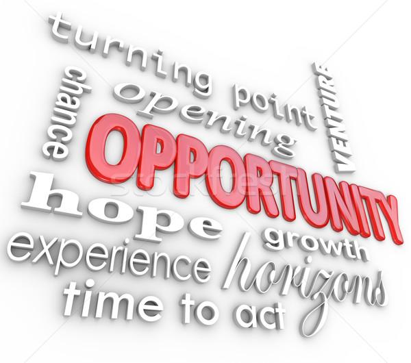 Gelegenheid woorden ervaring kans nieuwe opening Stockfoto © iqoncept