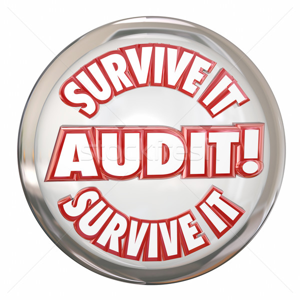 Audit Survive It Button Advice Prepare Accounting Steps Stock photo © iqoncept