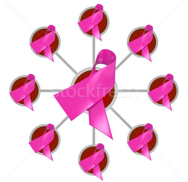Rose cancer du sein conscience fonds œuvre de bienfaisance Photo stock © iqoncept