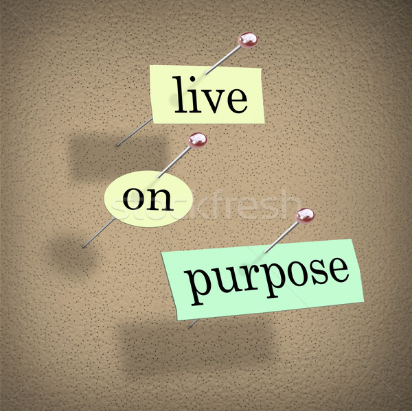 Stock photo: Live on Purpose Words on Bulletin Board Fulfilling Life