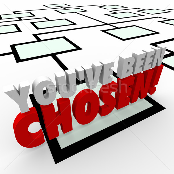 You've Been Chosen 3d Words Company Organization Chart Promotion Stock photo © iqoncept