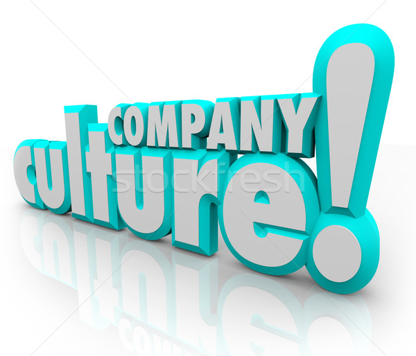 Company Culture 3d Words Team Organization Working Together Stock photo © iqoncept
