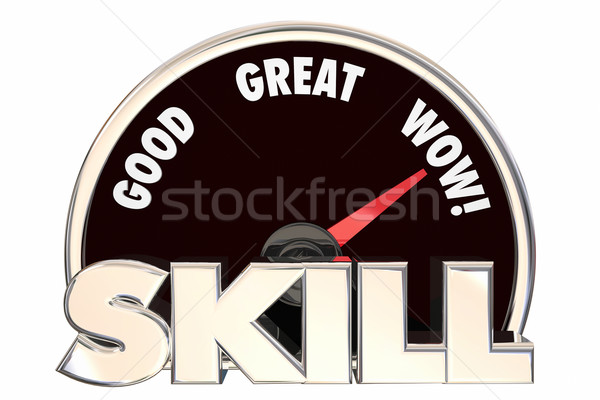 Skill Talent Experience Knowledge Measurement 3d Illustration Stock photo © iqoncept
