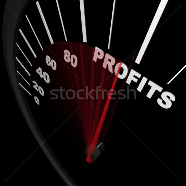 Speedometer - Rising Profits Successful Business Stock photo © iqoncept