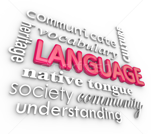 Language 3d Words Collage Learning Understanding Communication Stock photo © iqoncept