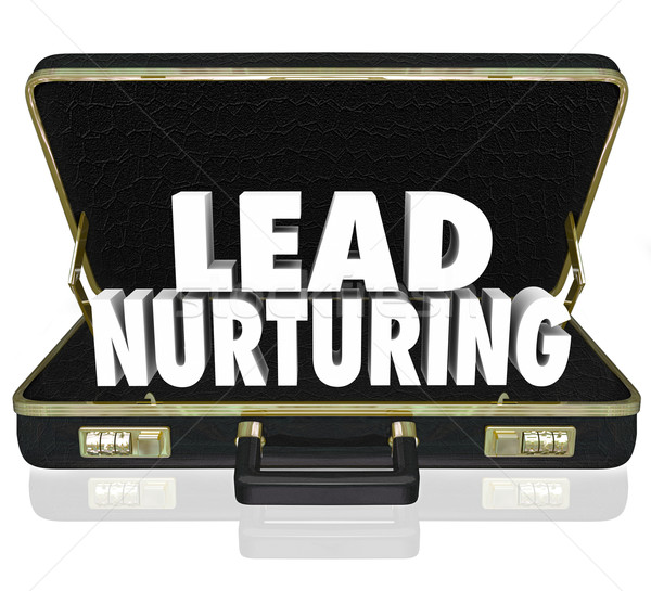 Lead Nurturing Briefcase Sales Campaign Educating Customers Pros Stock photo © iqoncept