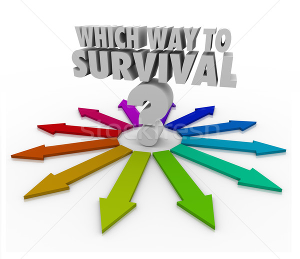Which Way to Survival Quesion Arrows Pointing Way  Stock photo © iqoncept