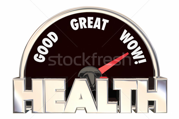 Health Score Measurement Fitness Wellness 3d Illustration Stock photo © iqoncept