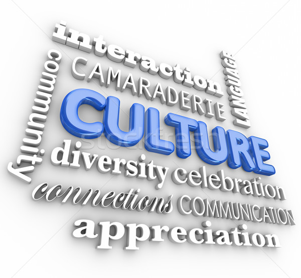 Culture 3d Word Collage Community Diversity Interaction Language Stock photo © iqoncept