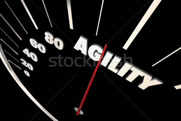 Agility Adaptive Change Ability Speedometer 3d Illustration Stock photo © iqoncept