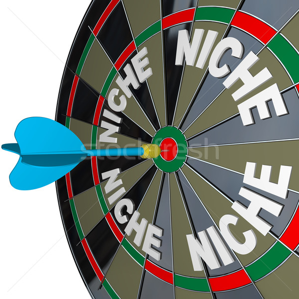 Stock photo: Niche Words on Dartboard Dart Hones on Specialized Demo