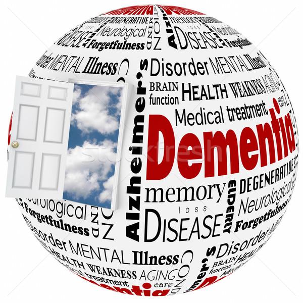 Demencja pamięć mózgu umysł Zdjęcia stock © iqoncept