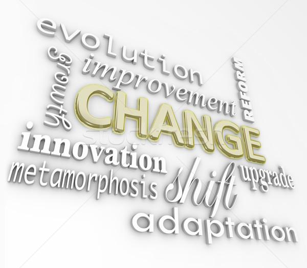 Changement 3D mots grandir succès Photo stock © iqoncept