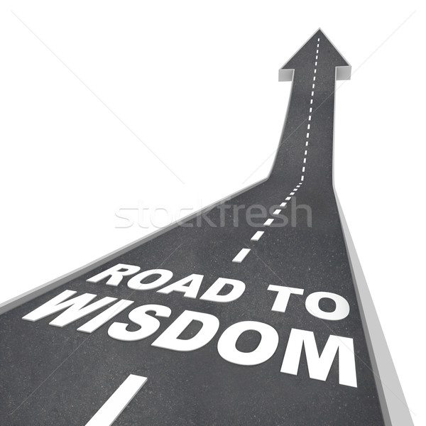 Road to Wisdom - Directions to Enlightenment and Intelligence Stock photo © iqoncept