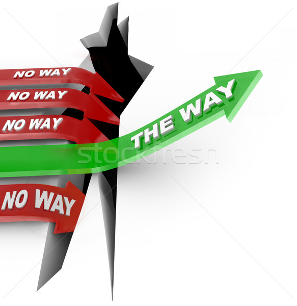 The Way Arrow Leads to Safety Others Fall Into Despair Stock photo © iqoncept