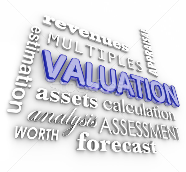 Valuation 3d Word Collage Multiples Revenues Assets Company Busi Stock photo © iqoncept