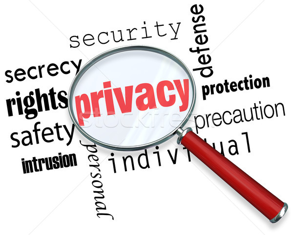 Privacy Word Magnifying Glass Online Security Identity Theft Stock photo © iqoncept
