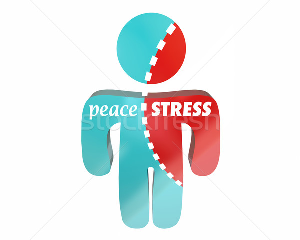 Peace Vs Stress Person Torn Worry Work Health Hurting Stock photo © iqoncept