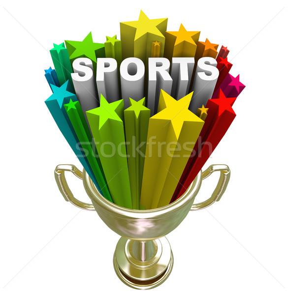 Sport mot or trophée gagnant champion Photo stock © iqoncept