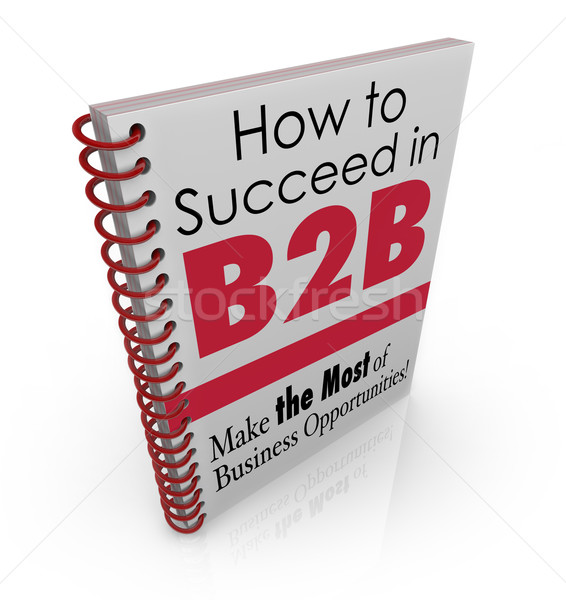 How to Succeed in B2B Business Advice Information Book Stock photo © iqoncept