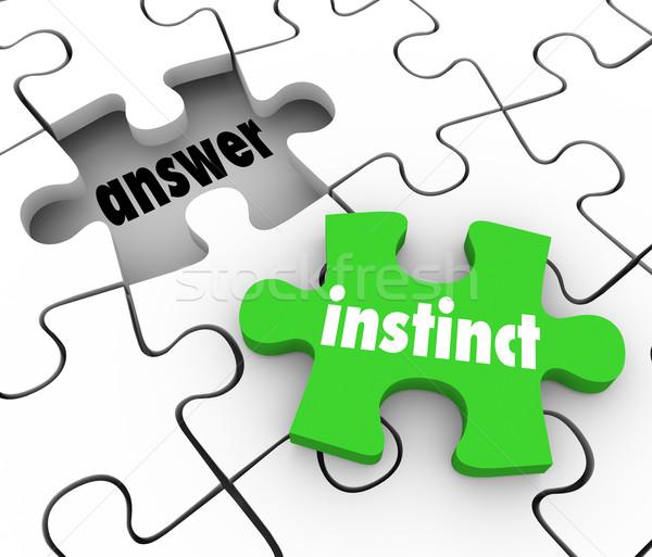 Instinct Puzzle Piece Find Answer Solve Puzzle Gut Feeling Solut Stock photo © iqoncept