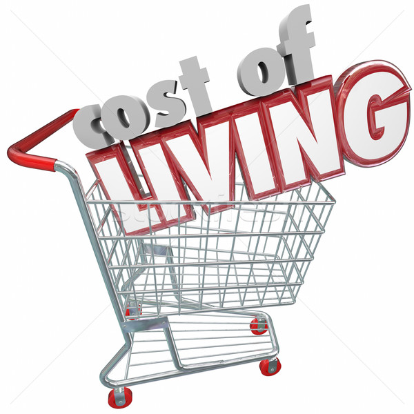 Cost of Living Shopping Cart Words Higher Price Goods Products Stock photo © iqoncept