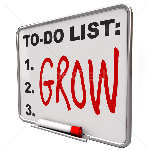 To-Do List - Grow Word on Dry Erase Board Stock photo © iqoncept
