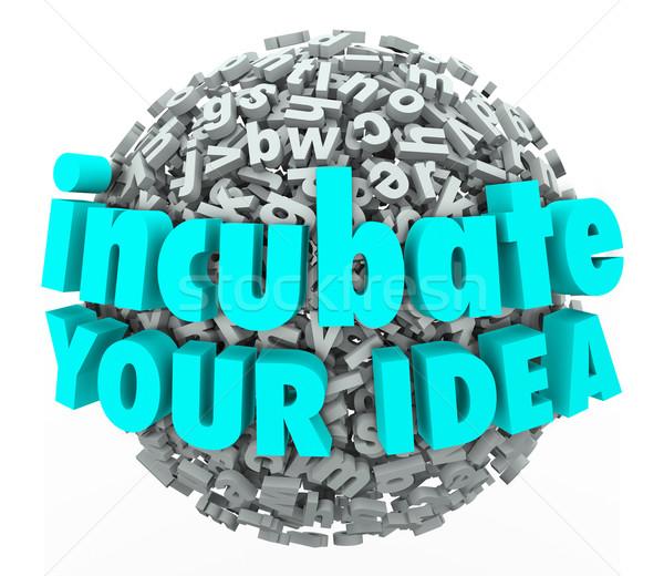 Incubate Your Idea 3d Words Letter Sphere Business Model Brainst Stock photo © iqoncept