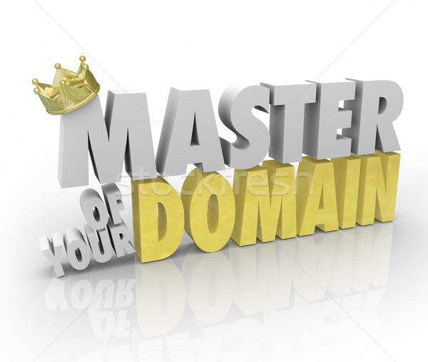 Master of Your Domain Crown on Word King Leader CEO  Stock photo © iqoncept