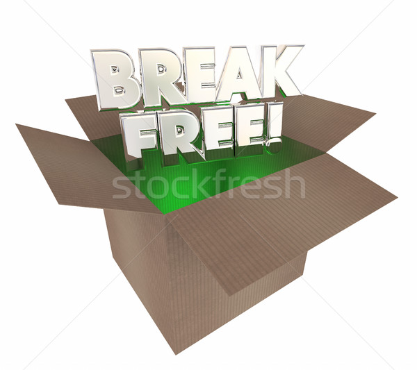 Break Free Liberate Yourself Cardboard Box Words 3d Illustration Stock photo © iqoncept