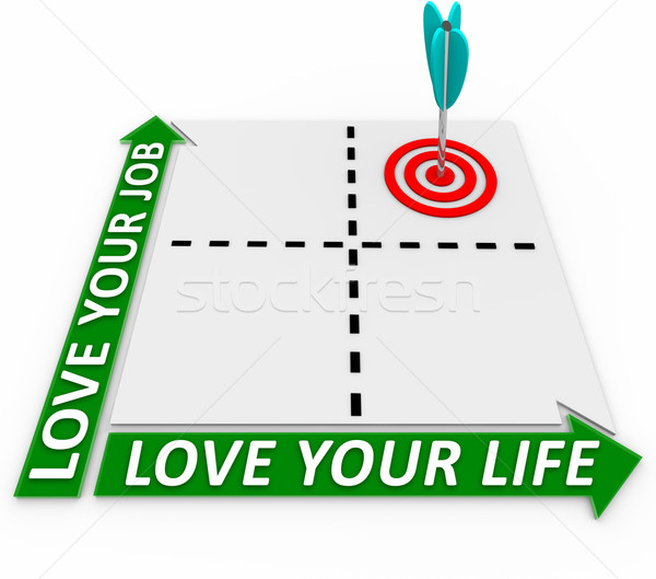 Career and Life Matrix - Arrow and Target Stock photo © iqoncept