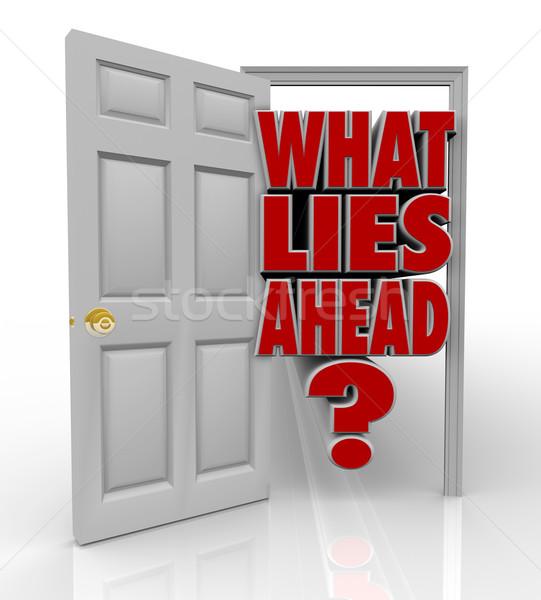 What Lies Ahead Open Door Words Future Opportunity Stock photo © iqoncept