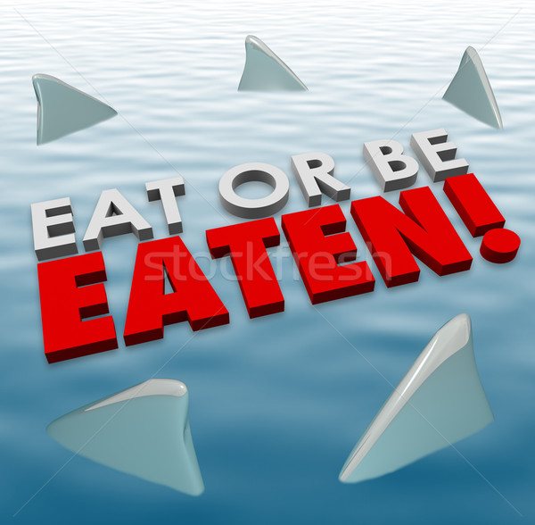 Eat or Be Eaten Sharks Fins Swimming Fierce Deadly Competition Stock photo © iqoncept