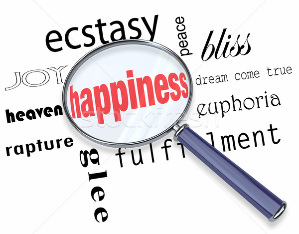 Finding Happiness - Magnifying Glass Stock photo © iqoncept